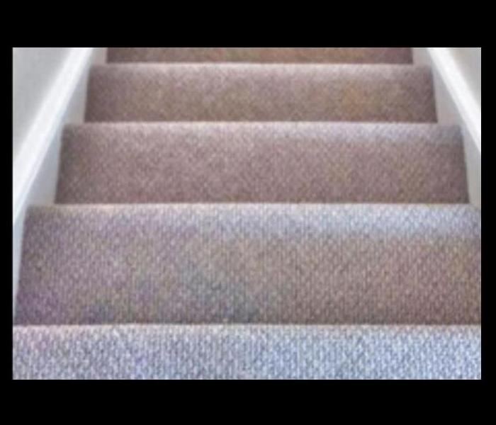 very clean carpet on stairs
