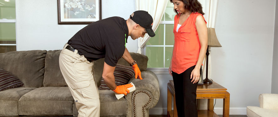 Eagan, MN carpet upholstery cleaning