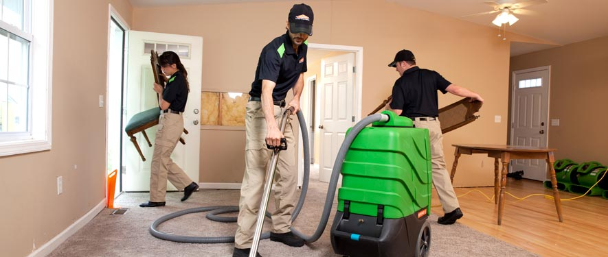 Eagan, MN cleaning services